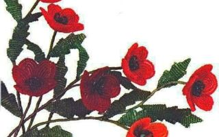 Вышивка крестом «маки», а также бисером: красивые и подробные схемы