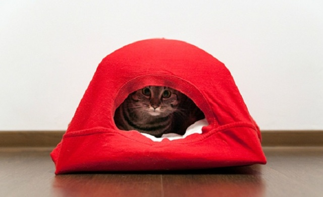 Выкройка кошки из ткани своими руками: как сшить самостоятельно дома