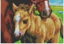 Вышивка с лошадьми крестом: схемы с белыми лошадками и девушкой, наборы
