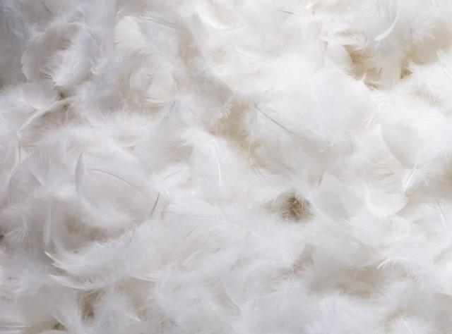 Утеплитель тинсулейт: что это такое, thinsulate insulation, на какую температуру